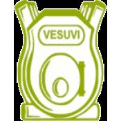 Печи Vesuvi