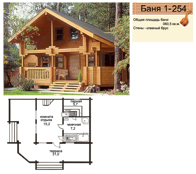 баня дом до 100 м2 проекты