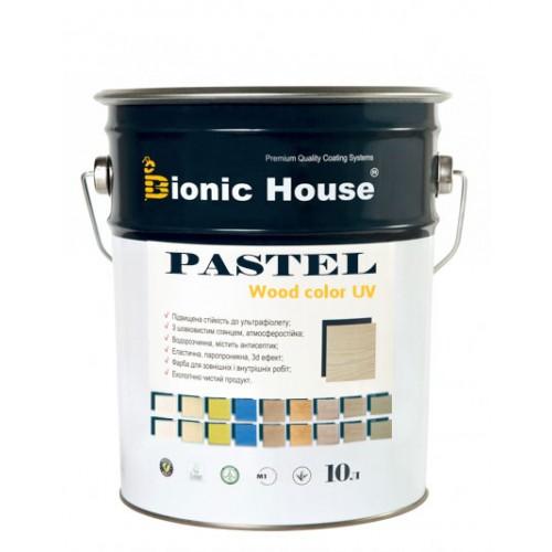 Bionic House Pastel